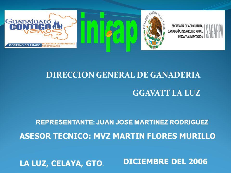 DIRECCION GENERAL DE GANADERIA GGAVATT LA LUZ LA LUZ, CELAYA, GTO. DICIEMBRE DEL 2006 ASESOR TECNICO: MVZ MARTIN FLORES MURILLO REPRESENTANTE: JUAN JO