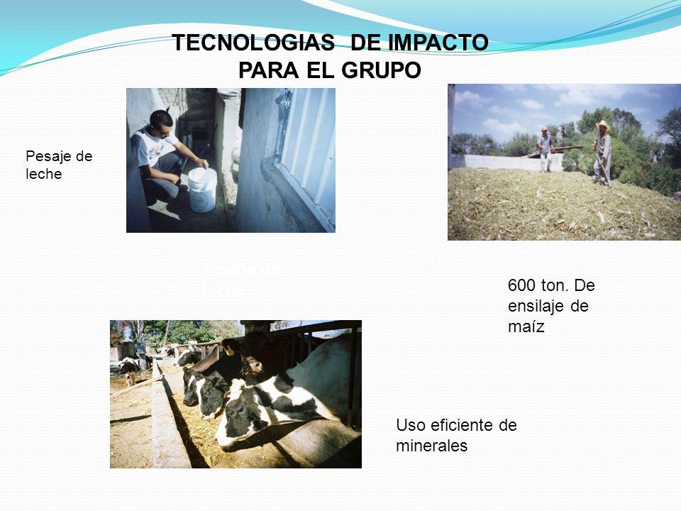 TECNOLOGIAS DE IMPACTO PARA EL GRUPO 600 ton. De ensilaje de maíz Uso eficiente de minerales Pesaje de leche