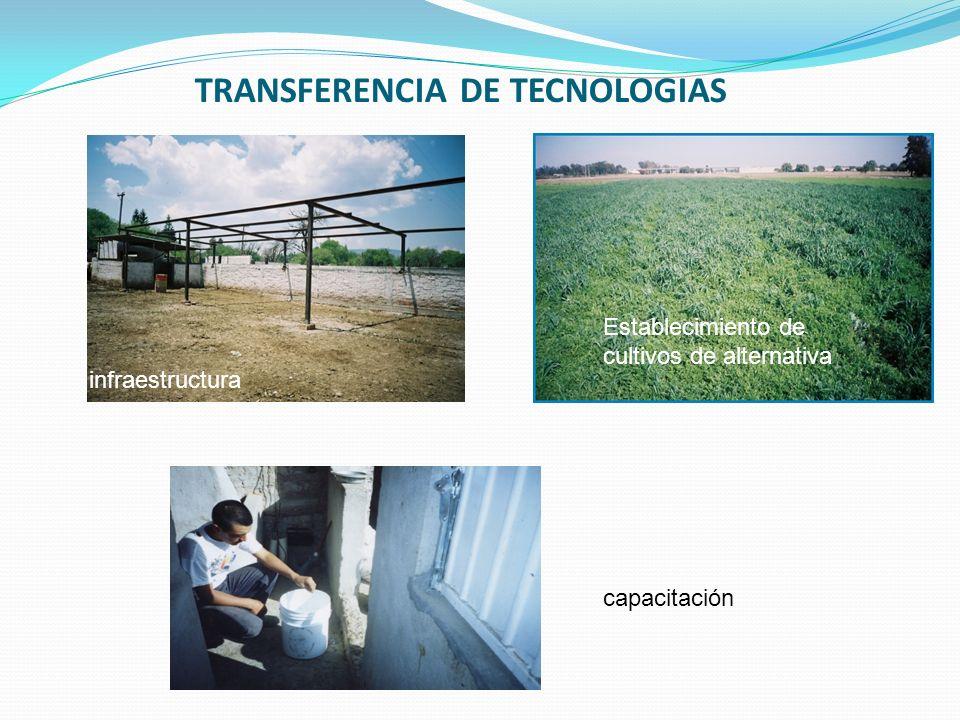 TRANSFERENCIA DE TECNOLOGIAS infraestructura Establecimiento de cultivos de alternativa capacitación