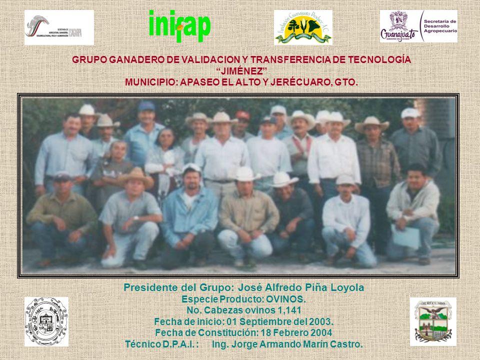 GRUPO GANADERO DE VALIDACION Y TRANSFERENCIA DE TECNOLOGÍA JIMÉNEZ MUNICIPIO: APASEO EL ALTO Y JERÉCUARO, GTO. Presidente del Grupo: José Alfredo Piña