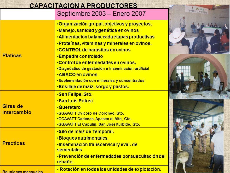 CAPACITACION A PRODUCTORES Septiembre 2003 – Enero 2007 Platicas Organización grupal, objetivos y proyectos. Manejo, sanidad y genética en ovinos Alim
