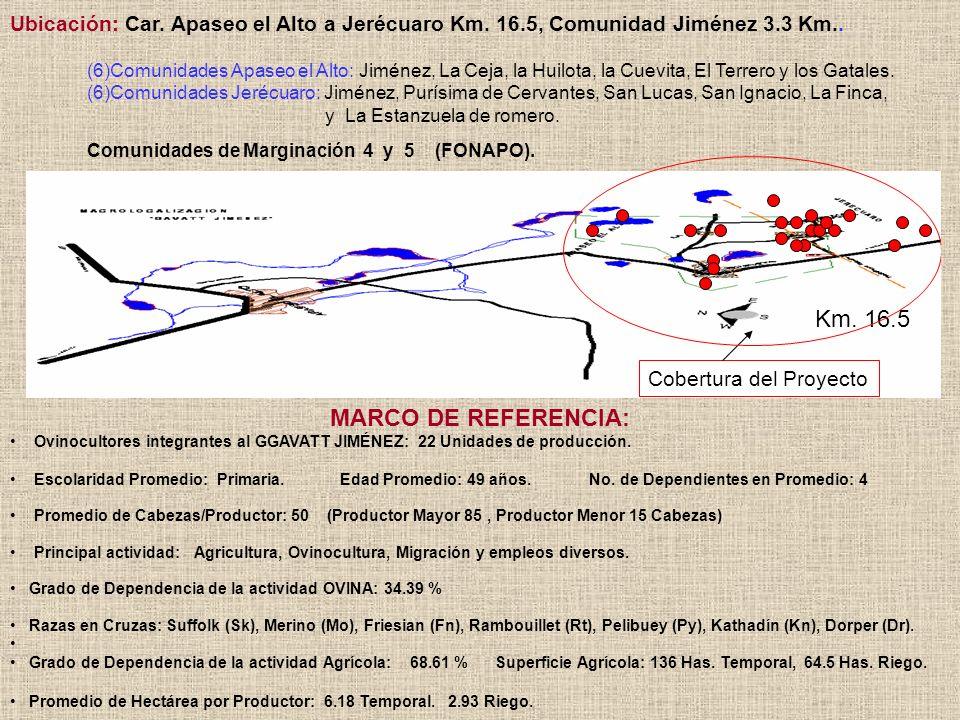 MARCO DE REFERENCIA: Ovinocultores integrantes al GGAVATT JIMÉNEZ: 22 Unidades de producción. Escolaridad Promedio: Primaria. Edad Promedio: 49 años.