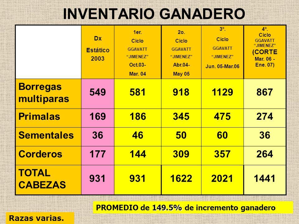 INVENTARIO GANADERO Dx Estático 2003 1er. Ciclo GGAVATT JIMENEZ Oct.03- Mar. 04 2o. Ciclo GGAVATT JIMENEZ Abr.04- May 05 3º. Ciclo GGAVATT JIMENEZ Jun
