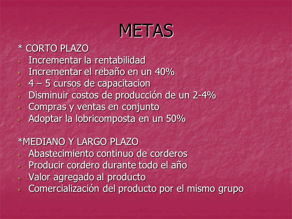 METAS * CORTO PLAZO Incrementar la rentabilidad Incrementar la rentabilidad Incrementar el rebaño en un 40% Incrementar el rebaño en un 40% 4 – 5 curs