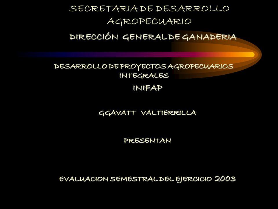 SECRETARIA DE DESARROLLO AGROPECUARIO DIRECCIÓN GENERAL DE GANADERIA DESARROLLO DE PROYECTOS AGROPECUARIOS INTEGRALES INIFAP GGAVATT VALTIERRILLA PRESENTAN EVALUACION SEMESTRAL DEL EJERCICIO 2003