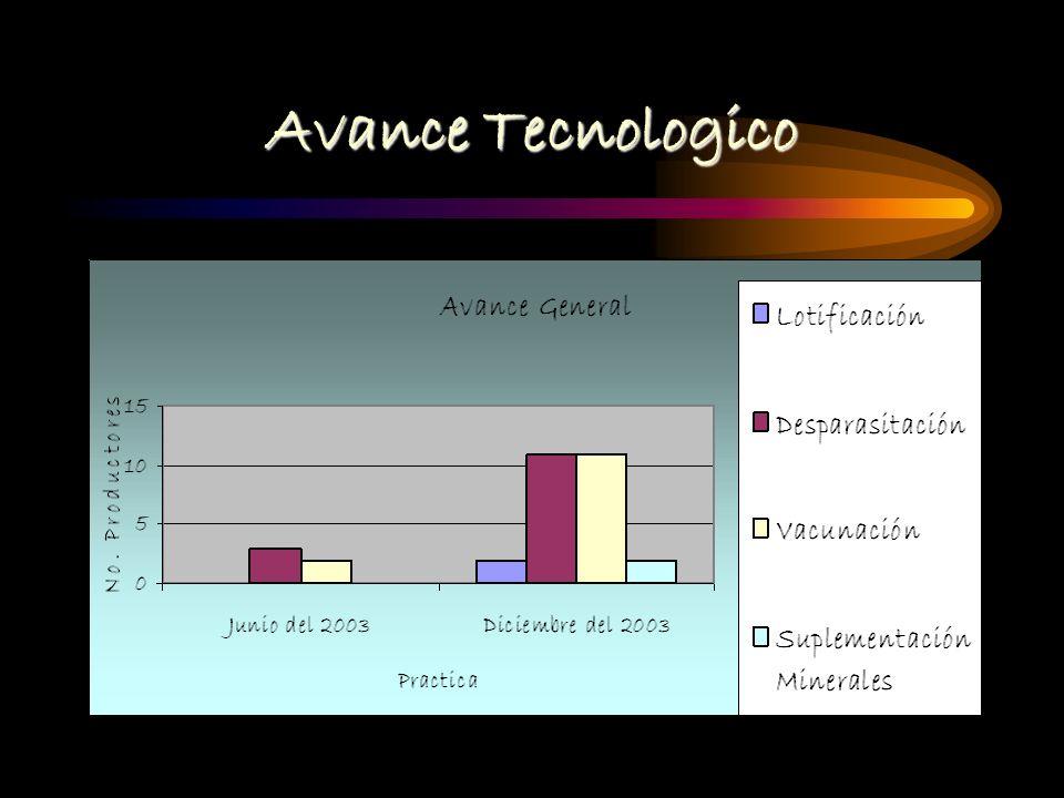 Avance Tecnologico NÚmero de productores :12