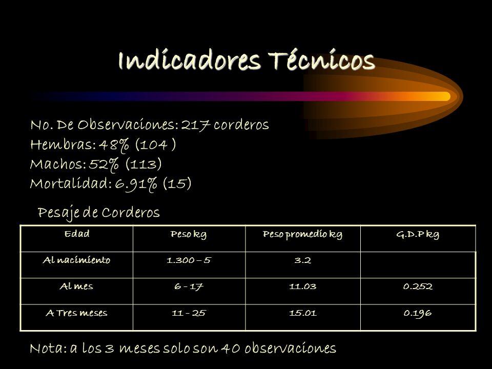 Indicadores Técnicos Datos Productivos de las hembras No. De Observaciones: 146 Hembras Tipo de PartoNo. De Observaciones % Simple8457.53 Doble5436.98