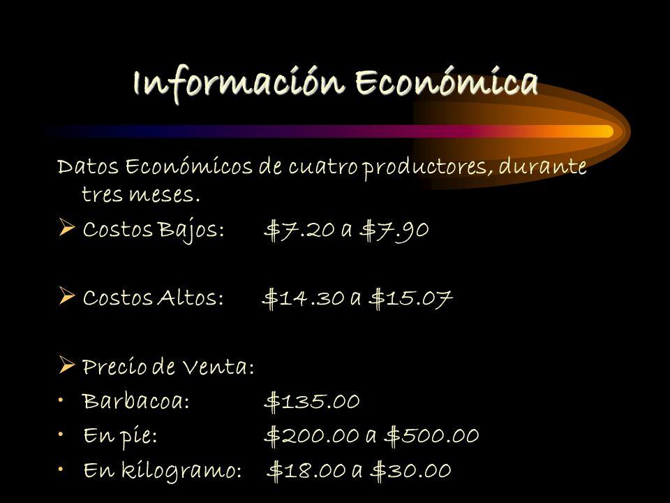 Informacion economica Inventario inicial de activos del GGAVATT (Aprox): $567,000 Total de egresos: $ 21,148.00 Total ingresos: $ 18,808.00 Diferencia: - $2340 *Datos de 3 meses * Datos de 4 productores