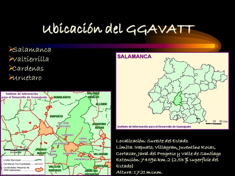 Ubicación del GGAVATT Salamanca Valtierrilla Cardenas Uruetaro Localización: Sureste del Estado.
