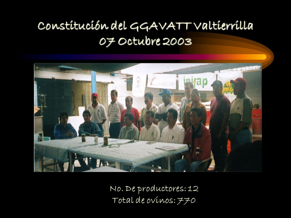 Constitución del GGAVATT Valtierrilla 07 Octubre 2003 No. De productores: 12 Total de ovinos: 770