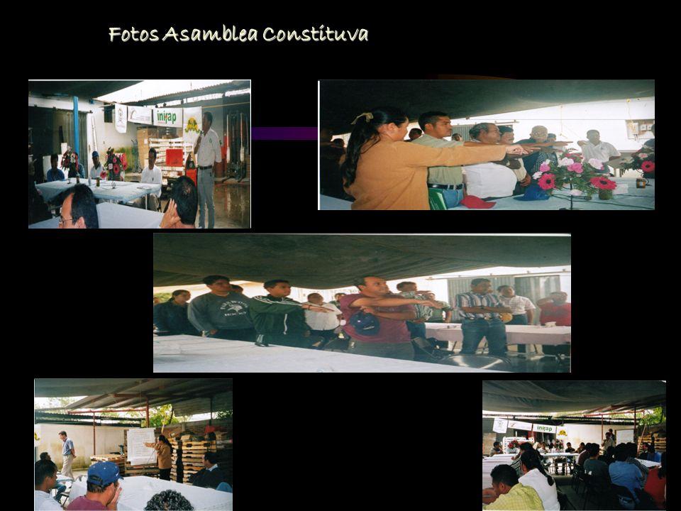 Fotos Asamblea Constituva