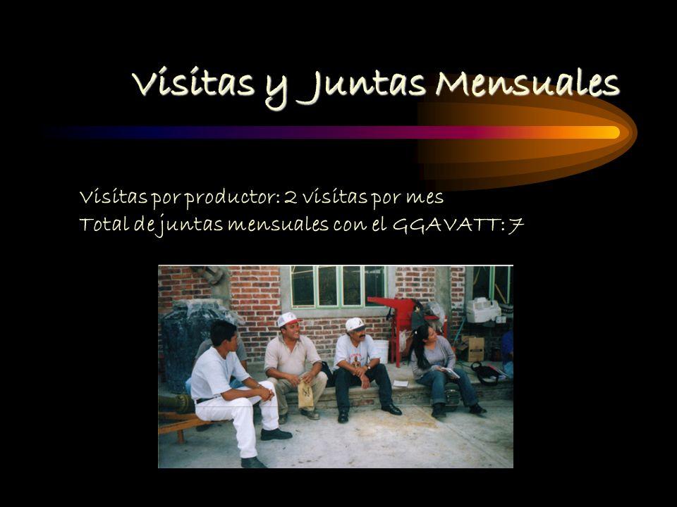 Visitas y Juntas Mensuales Visitas por productor: 2 visitas por mes Total de juntas mensuales con el GGAVATT: 7