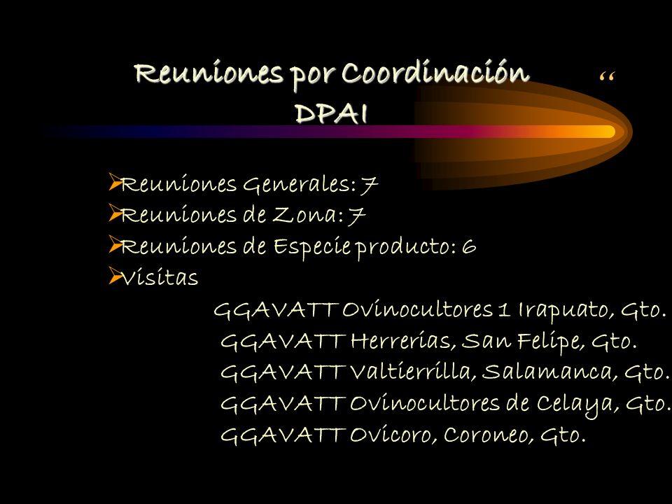 Reuniones por Coordinación DPAI Reuniones Generales: 7 Reuniones de Zona: 7 Reuniones de Especie producto: 6 Visitas GGAVATT Ovinocultores 1 Irapuato, Gto.