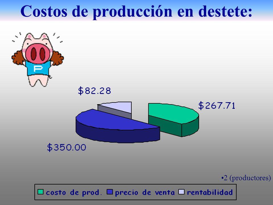 Costos de producción en destete: 2 (productores)