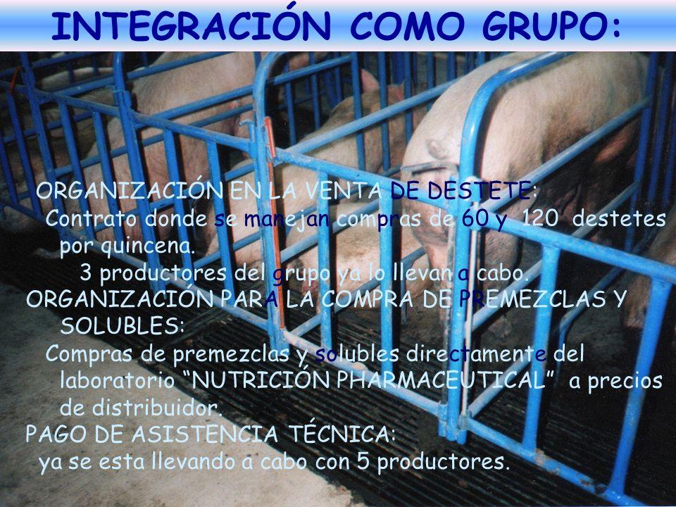 INTEGRACIÓN COMO GRUPO: ORGANIZACIÓN EN LA VENTA DE DESTETE: Contrato donde se manejan compras de 60 y 120 destetes por quincena. 3 productores del gr