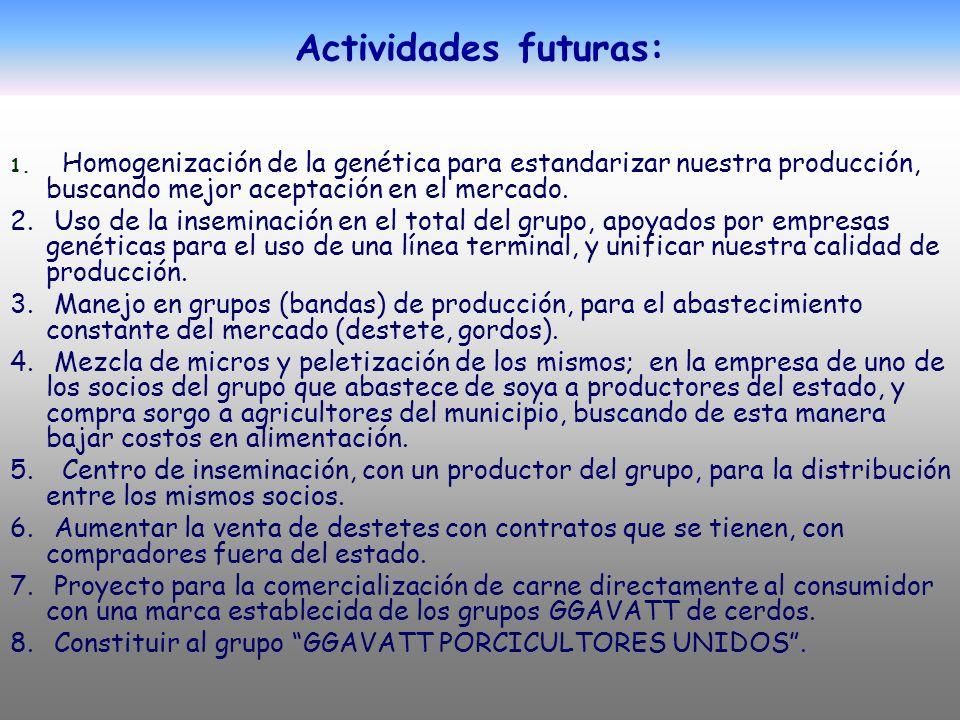 Actividades futuras: 1. Homogenización de la genética para estandarizar nuestra producción, buscando mejor aceptación en el mercado. 2. Uso de la inse