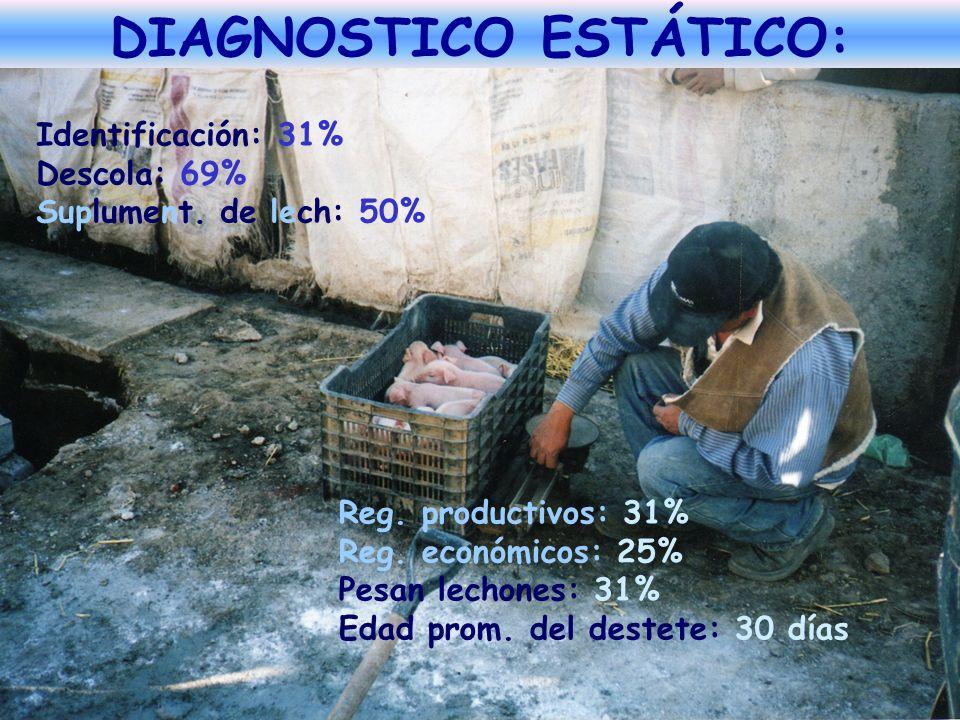 Identificación: 31% Descola: 69% Suplument. de lech: 50% Reg. productivos: 31% Reg. económicos: 25% Pesan lechones: 31% Edad prom. del destete: 30 día