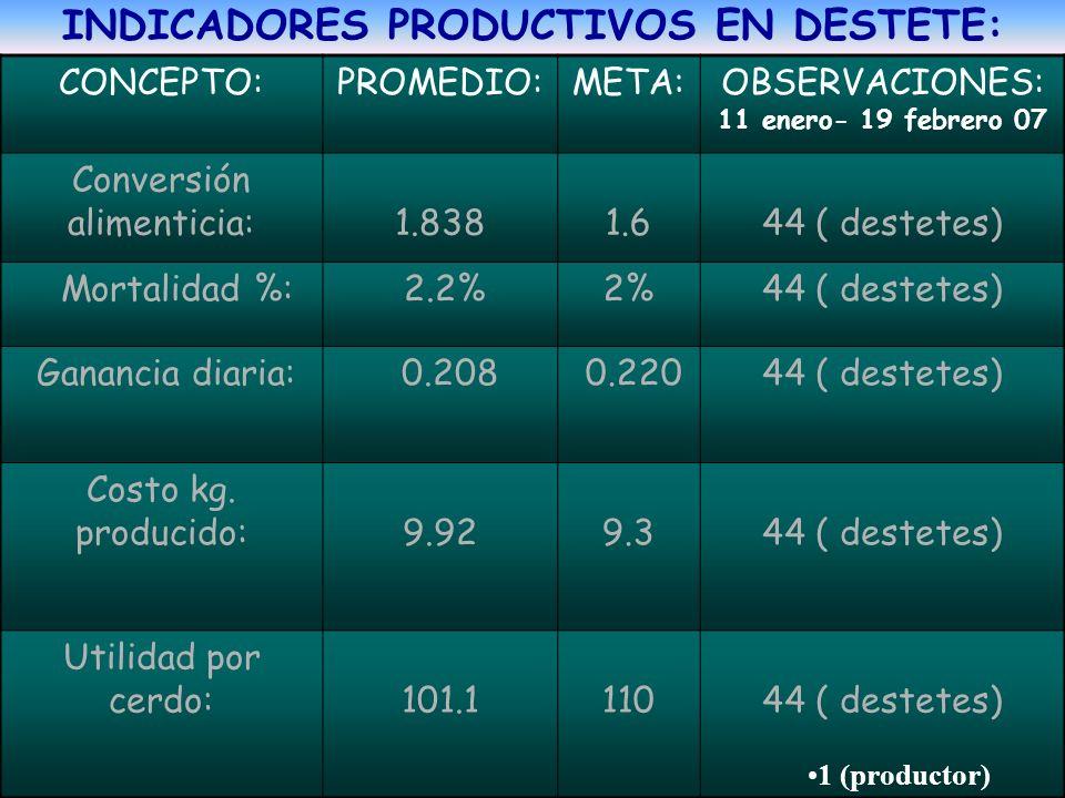 INDICADORES PRODUCTIVOS EN DESTETE: CONCEPTO:PROMEDIO:META:OBSERVACIONES: 11 enero- 19 febrero 07 Conversión alimenticia: 1.838 1.6 44 ( destetes) Mor