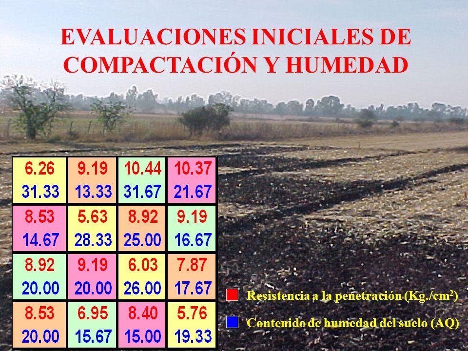 Resistencia a la penetración (Kg./cm 2 ) Contenido de humedad del suelo (AQ) EVALUACIONES INICIALES DE COMPACTACIÓN Y HUMEDAD