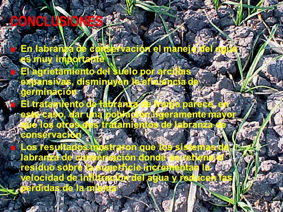 CONCLUSIONES En labranza de conservación el manejo del agua es muy importante El agrietamiento del suelo por arcillas expansivas, disminuyen le eficie