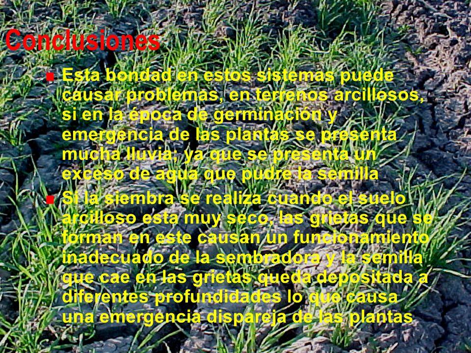 Conclusiones Esta bondad en estos sistemas puede causar problemas, en terrenos arcillosos, si en la época de germinación y emergencia de las plantas s