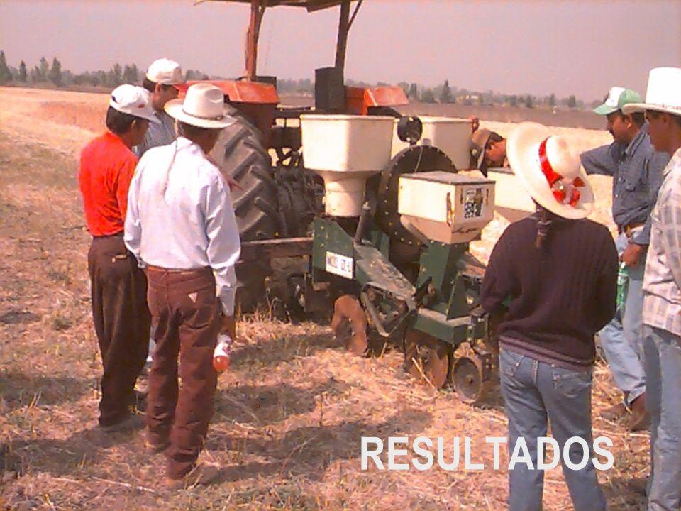 Desarrollo del cultivo al 26/06/2000 22 de mayo: aplicación de riego (120 mm) y precipitación (33 mm) 26-30 de mayor: precipitación (90 mm) 7-14 de junio: precipitación (83 mm) 3-12 de julio: precipitación (130 mm) 10 de Agosto: aplicación de riego 5 de septiembre: aplicación de riego Lecturas de Aquaterr: 80 a 100 = Saturación 80 a 55 = H.