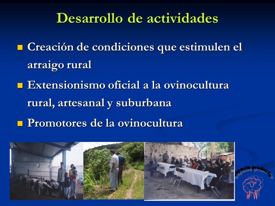 Creación de condiciones que estimulen el arraigo rural Creación de condiciones que estimulen el arraigo rural Extensionismo oficial a la ovinocultura