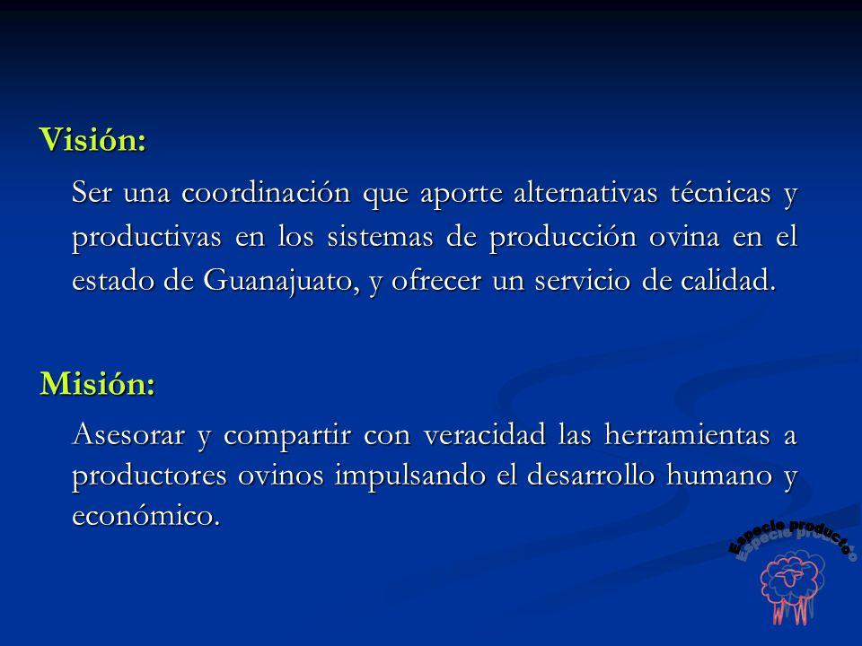 Visión: Ser una coordinación que aporte alternativas técnicas y productivas en los sistemas de producción ovina en el estado de Guanajuato, y ofrecer
