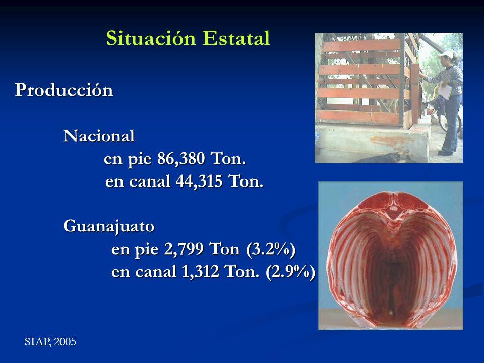 ProducciónNacional en pie 86,380 Ton. en pie 86,380 Ton. en canal 44,315 Ton. en canal 44,315 Ton.Guanajuato en pie 2,799 Ton (3.2%) en canal 1,312 To