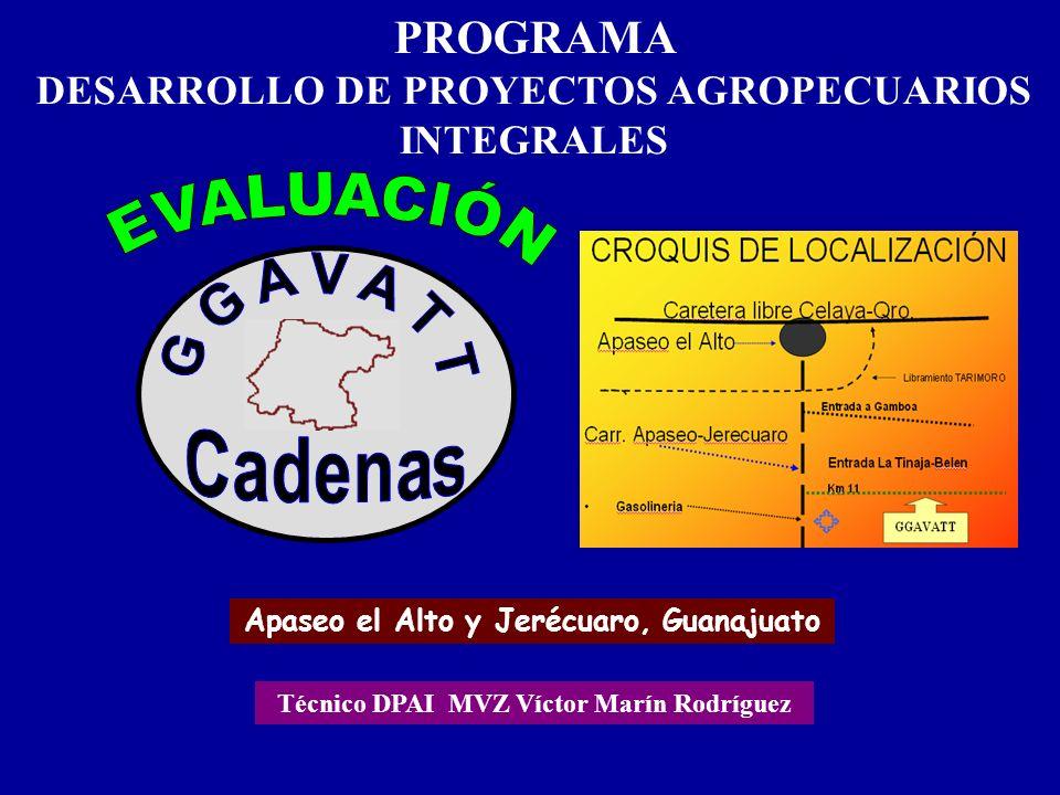 PROGRAMA DESARROLLO DE PROYECTOS AGROPECUARIOS INTEGRALES Apaseo el Alto y Jerécuaro, Guanajuato Técnico DPAI MVZ Víctor Marín Rodríguez