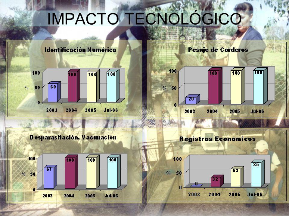 IMPACTO SOCIAL ORGANIZACIÓN DE LOS PRODUCTORES Pago mensual de nuestra aportación al técnico DPAI 12 Asambleas mensuales rotativas en el año 2005, promedio de asistencia: 84% Pláticas técnicas: 12 Totales en el año, una mensual con documento escrito.