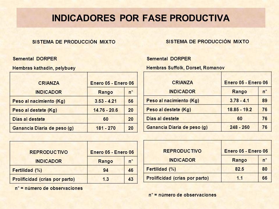 SISTEMA DE PRODUCCIÓN MIXTO Semental DORPER Hembras Friesian en diferentes grados de pureza.