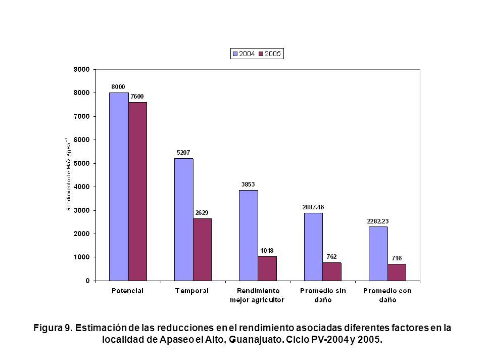 Figura 9. Estimación de las reducciones en el rendimiento asociadas diferentes factores en la localidad de Apaseo el Alto, Guanajuato. Ciclo PV-2004 y