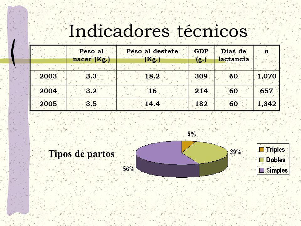Indicadores técnicos Peso al nacer (Kg.) Peso al destete (Kg.) GDP (g.) Días de lactancia n 20033.318.2309601,070 20043.21621460657 20053.514.4182601,