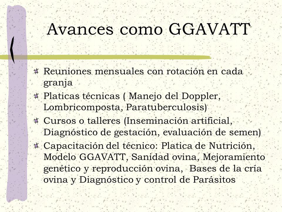Avances como GGAVATT Reuniones mensuales con rotación en cada granja Platicas técnicas ( Manejo del Doppler, Lombricomposta, Paratuberculosis) Cursos
