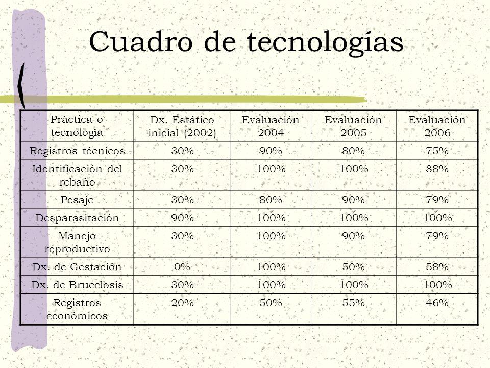 Cuadro de tecnologías Práctica o tecnología Dx. Estático inicial (2002) Evaluación 2004 Evaluación 2005 Evaluación 2006 Registros técnicos30%90%80%75%