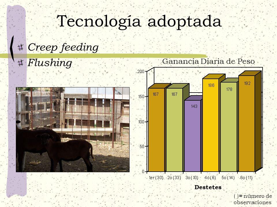 Tecnología adoptada Creep feeding Flushing Destetes Ganancia Diaria de Peso ( )= número de observaciones