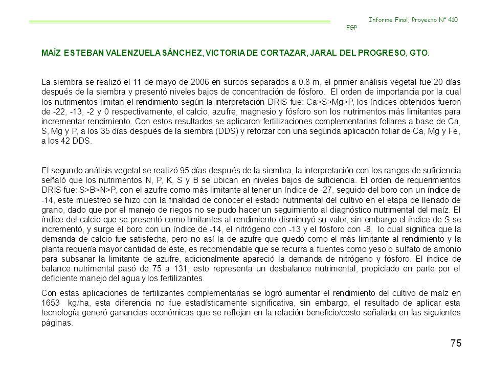 75 MAÍZ ESTEBAN VALENZUELA SÁNCHEZ, VICTORIA DE CORTAZAR, JARAL DEL PROGRESO, GTO. La siembra se realizó el 11 de mayo de 2006 en surcos separados a 0