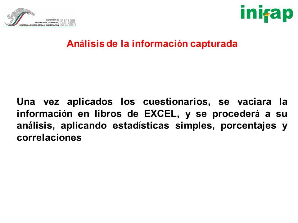 An á lisis de la informaci ó n capturada Una vez aplicados los cuestionarios, se vaciara la informaci ó n en libros de EXCEL, y se proceder á a su an