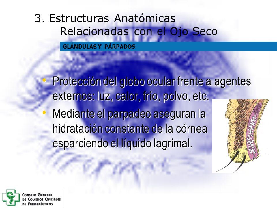 Protección del globo ocular frente a agentes externos: luz, calor, frío, polvo, etc. Protección del globo ocular frente a agentes externos: luz, calor