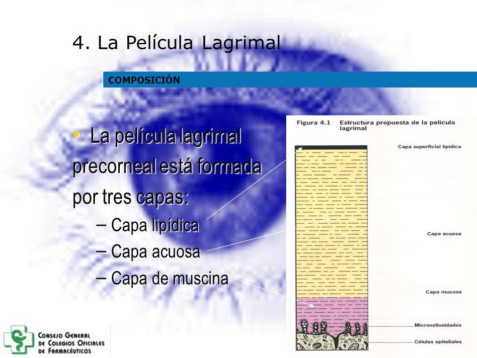 La película lagrimal La película lagrimal precorneal está formada por tres capas: – Capa lipídica – Capa acuosa – Capa de muscina COMPOSICIÓN 4. La Pe