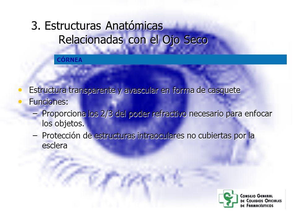 3. Estructuras Anatómicas Relacionadas con el Ojo Seco Estructura transparente y avascular en forma de casquete Estructura transparente y avascular en