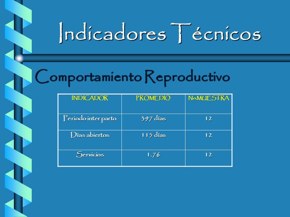 Indicadores Técnicos Fase de producción a partir del 2do. parto INDICADORPROMEDIO NO. MUESTRA Prod. Por lactancia 6286.9 kg. 12 Días en lactancia 3191