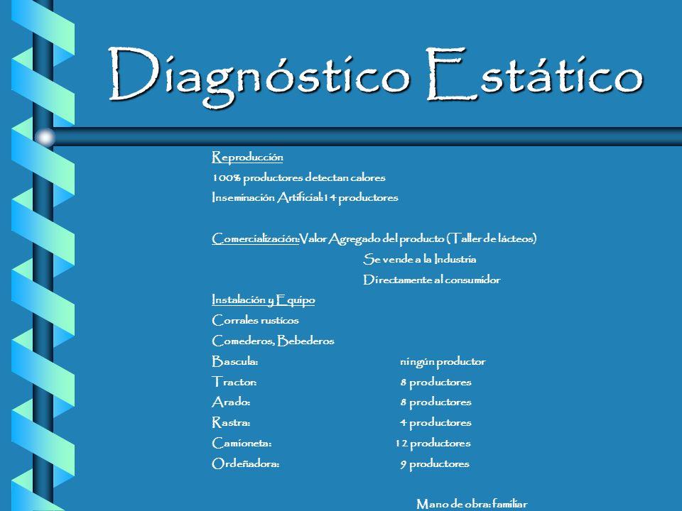 Diagnóstico Estático Aspectos Socioculturales No. De productores: 16 Edad promedio: 44 años 100% de productores saben leer y escribir Aspectos Socioec