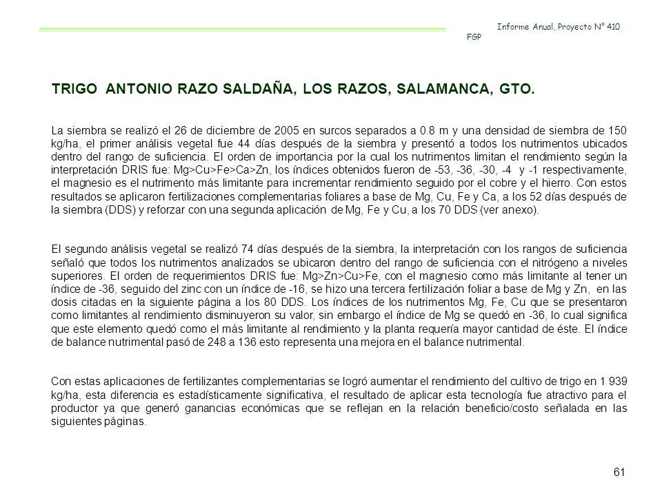 TRIGO ANTONIO RAZO SALDAÑA, LOS RAZOS, SALAMANCA, GTO. La siembra se realizó el 26 de diciembre de 2005 en surcos separados a 0.8 m y una densidad de