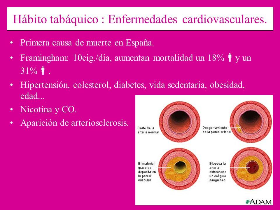 Hábito tabáquico : Enfermedades cardiovasculares. Primera causa de muerte en España. Framingham: 10cig./día, aumentan mortalidad un 18% y un 31%. Hipe