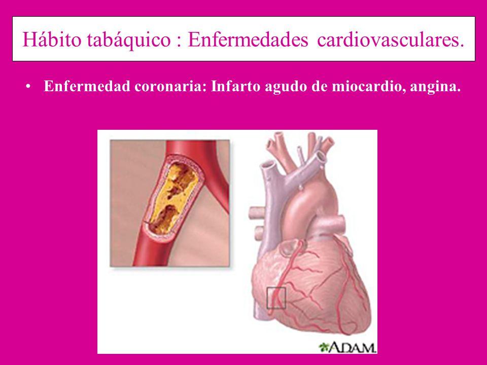 Hábito tabáquico : Enfermedades cardiovasculares. Enfermedad coronaria: Infarto agudo de miocardio, angina.