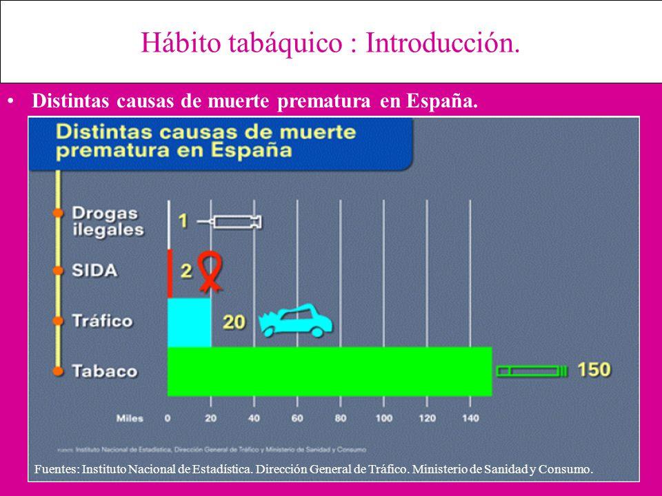 Hábito tabáquico : Introducción. Distintas causas de muerte prematura en España. Fuentes: Instituto Nacional de Estadística. Dirección General de Tráf