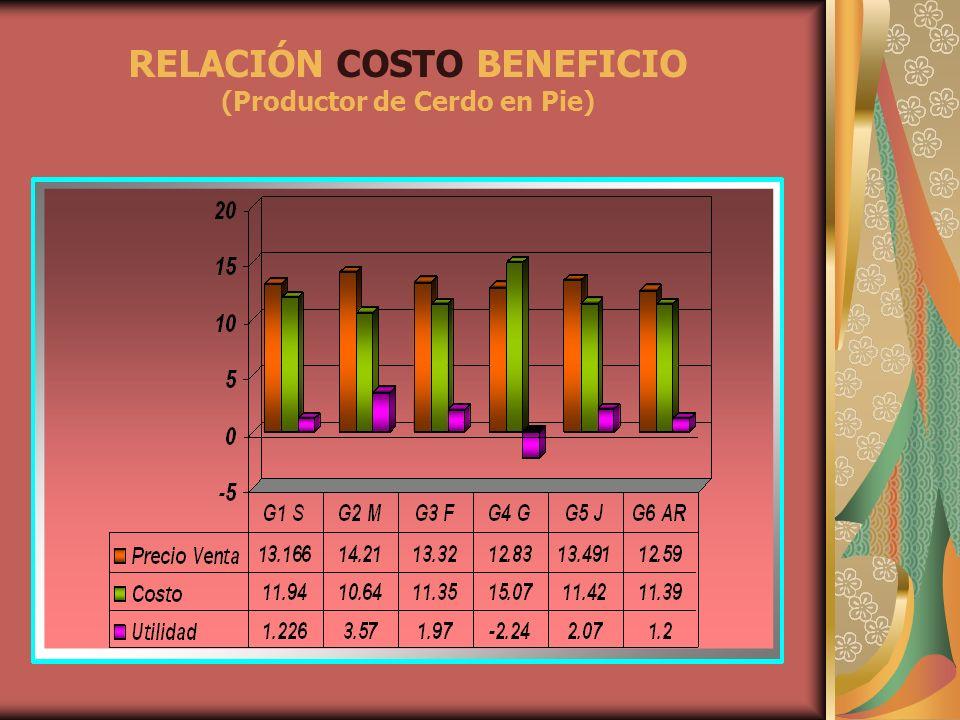 RELACIÓN COSTO BENEFICIO (Productor de Cerdo en Pie)