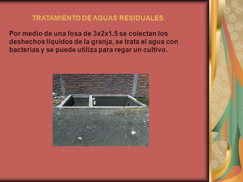 TRATAMIENTO DE AGUAS RESIDUALES. Por medio de una fosa de 3x2x1.5 se colectan los deshechos líquidos de la granja, se trata el agua con bacterias y se